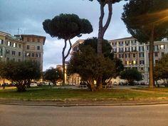 Piazza Verbano (2014)