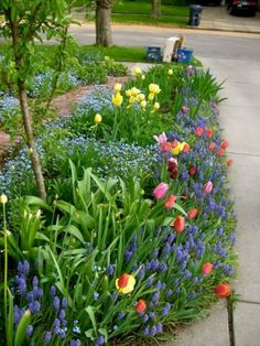 26 stunning spring garden ideas for front yard and backyard landscaping - HomeSpecially Garden Bulbs, Planting Bulbs, Planting Flowers, Flower Gardening, Fall Planting, Tulips Garden, Vegetable Gardening, Gardening Tips, Small Flower Gardens