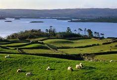 Beautiful Ireland - Bing Images