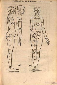 Proportion: Les quatre livres d'Albert Durer, peinctre & geometrien tres excellent, de ... - Albrecht Dürer, Louis Meigret - Google Livres