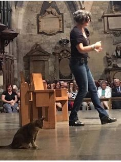 Thank God For Our Animals - The Corners by Nadia Bolz-Weber Feast Of St Francis, Southwark Cathedral, People Leave, Rainbow Bridge, Losing A Pet, Siamese Cats, Thank God, Sea Creatures, Good Books