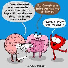 Gut. trust.  Decision