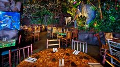"""Food is so so. LOVE the place    Sign for Rainforest Café declares """"A wild place to shop and eat"""""""