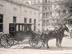 Horse-Drawn Carriages to be Replaced by Electric Buggies in NYC? Description from insideevs.com. I searched for this on bing.com/images