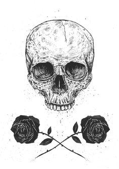skull, rose, flower, black and white, drawing