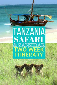 Want to go on an Want to go on an safari in and also spend time in tropical Check out what to do there with 2 weeks! Places To Travel, Places To Go, Chobe National Park, Africa Destinations, Holiday Destinations, Travel Destinations, Tanzania Safari, African Safari, East Africa