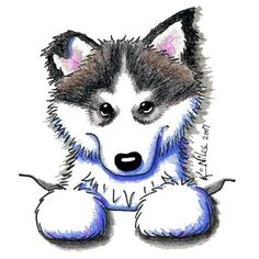 Alaskan Malamute Puppy For Jean..Tooku and Howie..