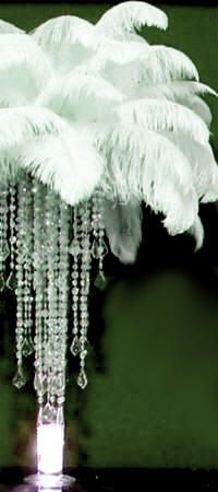 This is a vintage ostrich feathers centerpiece theme I have seen. Here again are those streaming crystals .. Very 20s-40sish