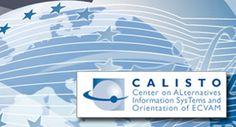 """CALISTO  WOOI® progetta il logo e tutta l'immagine coordinata del progetto """"Center on Alternatives Information Systems and Orientation of ECVAM""""."""