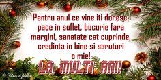 Pentru anul ce vine îți doresc: pace în suflet, bucurie fără margini, sănătate cât cuprinde, credință în bine și săruturi o mie! An Nou Fericit, Christmas Wreaths, Christmas Bulbs, Happy New Year, Holiday Decor, Pace, Facebook, Happy 2015, Christmas 2016