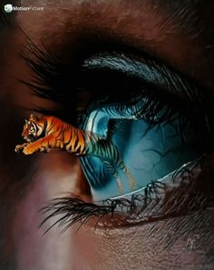 ideas eye drawing reflection pictures for 2019 Pretty Eyes, Cool Eyes, Reflection Pictures, Tiger Pictures, Art Pictures, Eyes Artwork, Crazy Eyes, Photo Composition, Eye Photography