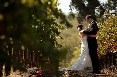Zenaida Cellars Vineyard Wedding Photography