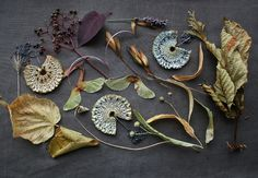 colours of the season II. by tinctory, via Flickr