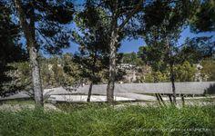 el Valle Trenzado, grupo aranea, Elche