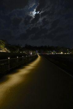 金沢城いもり堀脇の歩道を密やかに照らす照明。