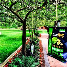Back to our roots! #tbt #creative #cute #baresnacks #love #park #sf #snack #healthy #food