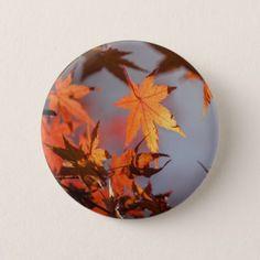 Fall Wonderland of Autumn Colour Pinback Button - autumn gifts templates diy customize
