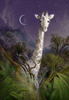Jemmy off Lauren st John's book the white giraffe