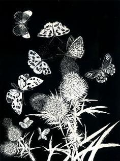 Kay Leverton Butterflie's Dance - Art Print Limited Edition from Scraperboard original