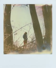 Vintage Nature Photography, Film Photography, Polaroid Pictures, Polaroids, Son Of Zeus, Impossible Project, Photography Illustration, Lomography, Aesthetic Vintage