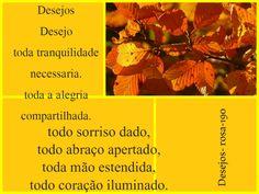 Meus Poemas  Minhas Reflexões (R.R.): N. 79 Desejos ( 190- desejo toda a tranquilidade.....