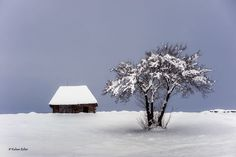 Winter landscape by Kalmar Zoltan on Winter Landscape, Romania, Fall Winter, Snow, Places, Nature, Photography, Travel, Outdoor