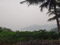 View from parking lot, Mount Nuang via Janda Baik route, Malaysia