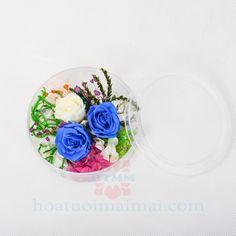 2 Hoa hồng xanh bất tử và 1 bông hồng trắng