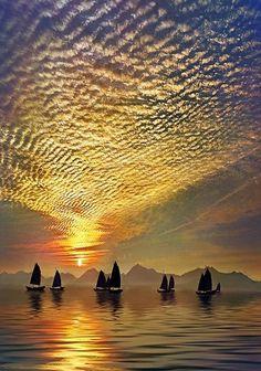 Ho Yau Ming Charles, Fishing At Sunrise