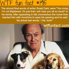 The last words of Roald Dahl - WTF fun she wolf Wtf Fun Facts, Funny Facts, Funny Memes, Random Facts, Funny Drunk, Videos Funny, Epic Facts, Random Trivia, Odd Facts