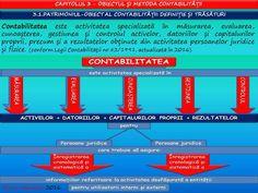 Profu`economist: PATRIMONIUL-OBIECT AL CONTABILITĂȚII: DEFINIȚIE ȘI... Bar Chart, School, Schools