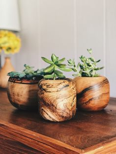 Succulent Planters Carolina Grain Co These cute little succulent plants were made by Andrew Mccarn owner of Carolina Grain Co woodworking They are small and compact for. Cool Wood Projects, Lathe Projects, Wood Turning Projects, Cool Woodworking Projects, Wood Turning Lathe, Wood Lathe, Planting Succulents, Succulent Plants, Woodworking Lathe