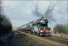 The flying Scotsman Station To Station, Flying Scotsman, Steam Railway, Train Art, Old Trains, Train Engines, Steam Engine, Steam Locomotive, Transportation