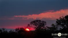An amazing sunset signalled the end of another glorious day in the bush.