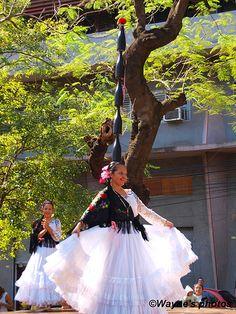 Bottle Dance, Paraguay   Wayne Goddard