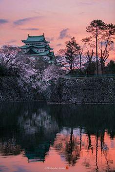 Foto de Hidenobu Suzuki Japón,Nagoya castle and sakura
