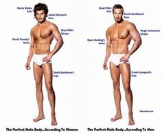 He Says/She Says: The Ideal Male/Female Body Parts Look Like ...