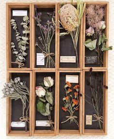 Flower Doodles, Garden Art, Garden Design, Veg Garden, Aesthetic Rooms, Arte Floral, Flower Boxes, Dried Flowers, Woodworking Crafts