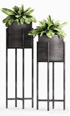 23 Mid Century Modern Plant Stands Ideas & Inspiration Flowers Plant Stands Modern - You are in the right place about Home diy ike - Modern Plant Stand, Diy Plant Stand, Indoor Plant Stands, Black Plant Stand, Metal Plant Stand, Interior Plants, Interior Design, Beton Design, Flower Stands