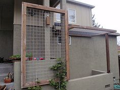 Could use this with clematis to add privacy to our back yard!