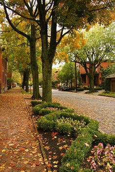 """#CRP394  Like all streets in German Village, they are 'meticulously maintained front yards, front tree-lined streets with brick sidewalks and cultivated village planters."""""""