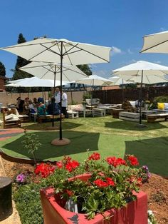 Special promotional offers for Eventpallet furniture hires - 20 guests 30 guests 40 guests Lemonade Bar, How To Memorize Things, Things To Come, Pallet Furniture, Night Life, Event Planning, Tent, Patio, Outdoor Decor