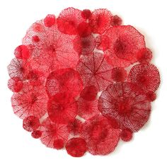 Australian artist Meredith Woolnough uses embroidery to create her delicate and intricate depictions of different plants.