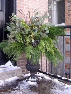 Winter container.... should do something like this with the planters on my front porch for the winters.