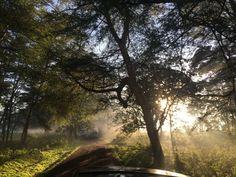 Kenia | VERHUISBERICHT | Nieuw avontuur @ Charlie's Travels!