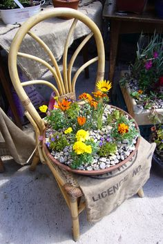Chair planter at the greenhouse@emmaus