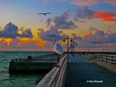 Sunrise on the White Street Pier, Key West - Photo by Don Kincaid