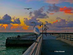 Sunrise on the White Street Pier, Key West - Photo by Don Kincaid
