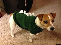 """My daughter spends too much time on Pinterest and once again emails me a photo and says """"Hey Mom, can you make this?"""". It was a photo of a dog sweater with dinosaur spikes. Cute. Yep, pretty sure I can pattern this one."""