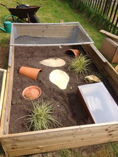 Outdoor tortoise enclosure - please see other pics for enclosure after 9 months once food garden has matured